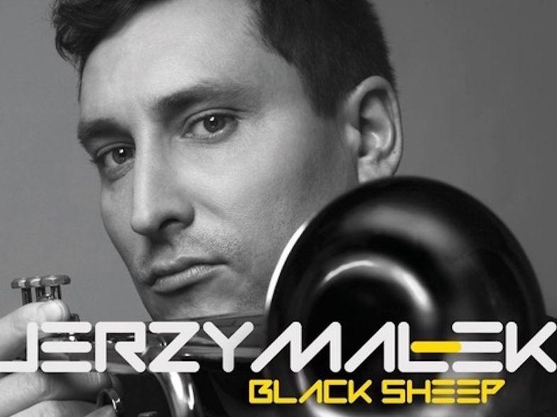 jerzy-malek-black-sheep