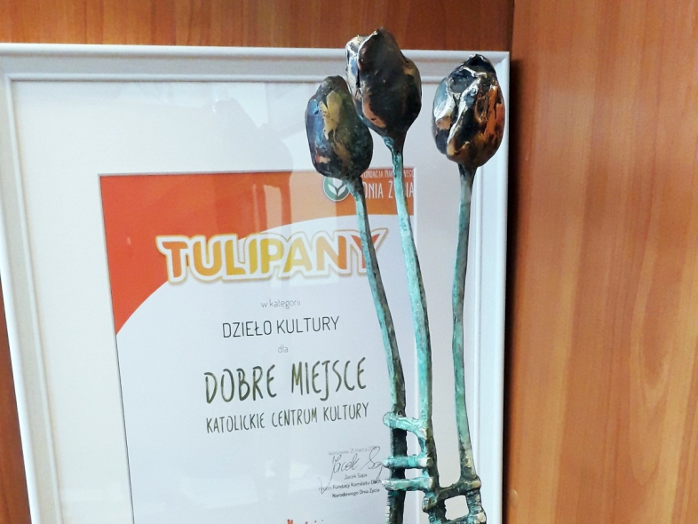 tulipan_dobre_miejsce