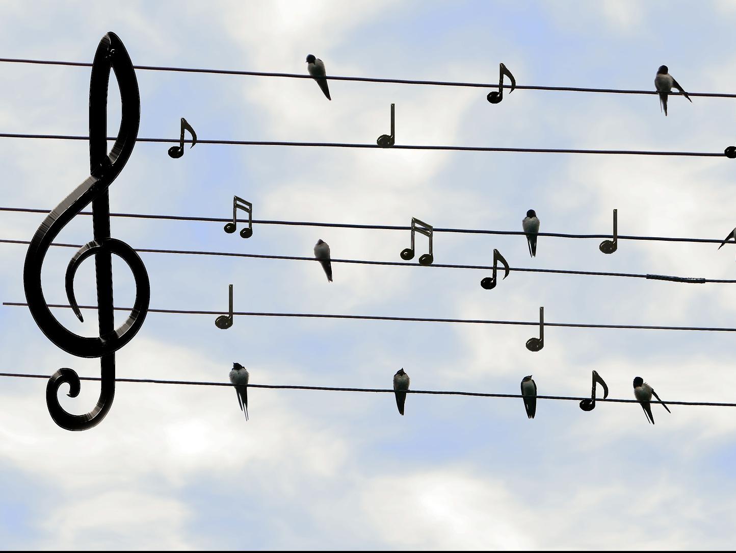 spiewaj_razem_z_nami